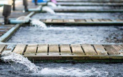 Filtros De Água Retrolaváveis Reduzem Custos Nas Indústrias
