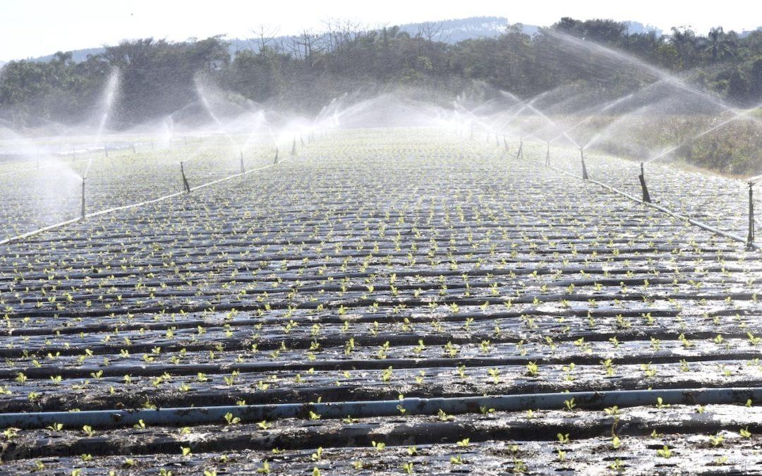 Reúso da Água no Agronegócio